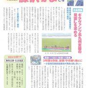 市議会530_fujisawaのサムネイル